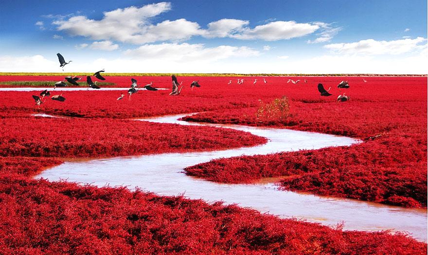 Невероятные фотографии природы, сделанные без использования Photoshop 0 1432d1 fe0a196 orig