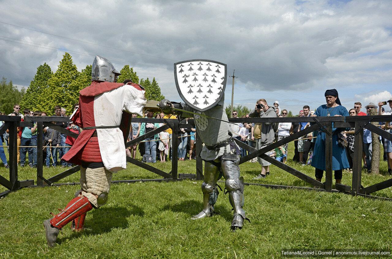 Фестиваль - Эпоха рыцарства-2017