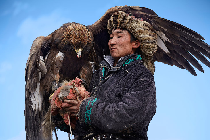 Орлиная охота в Монголии (14 фото)