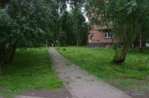 Фотография Инты №8104  Юго-восточный угол Воркутинской 10 (территория после недавнего покоса травы) 02.07.2015_17:20