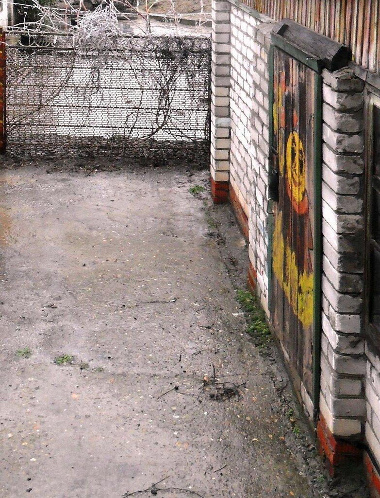 Дождь идёт ... SAM_5061-8.JPG