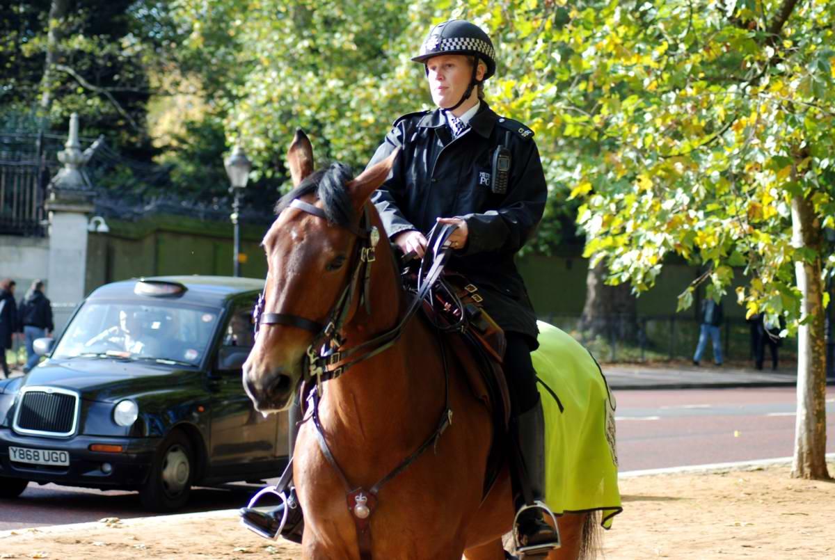 Смотреть картинки полицейский участок конная полиция