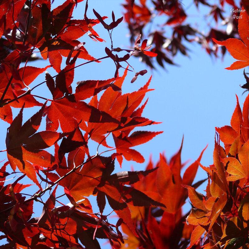 не осень....