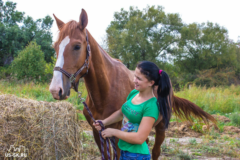лошадь и девушка