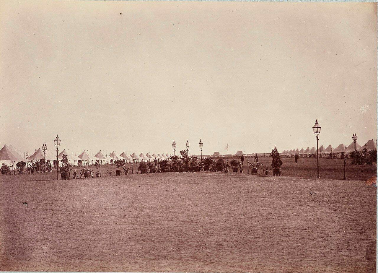 185. Общий вид лагеря Его Королевского Высочества Принца Уэльского, Агра