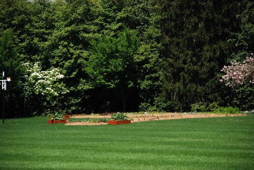 Огород жены Обамы!