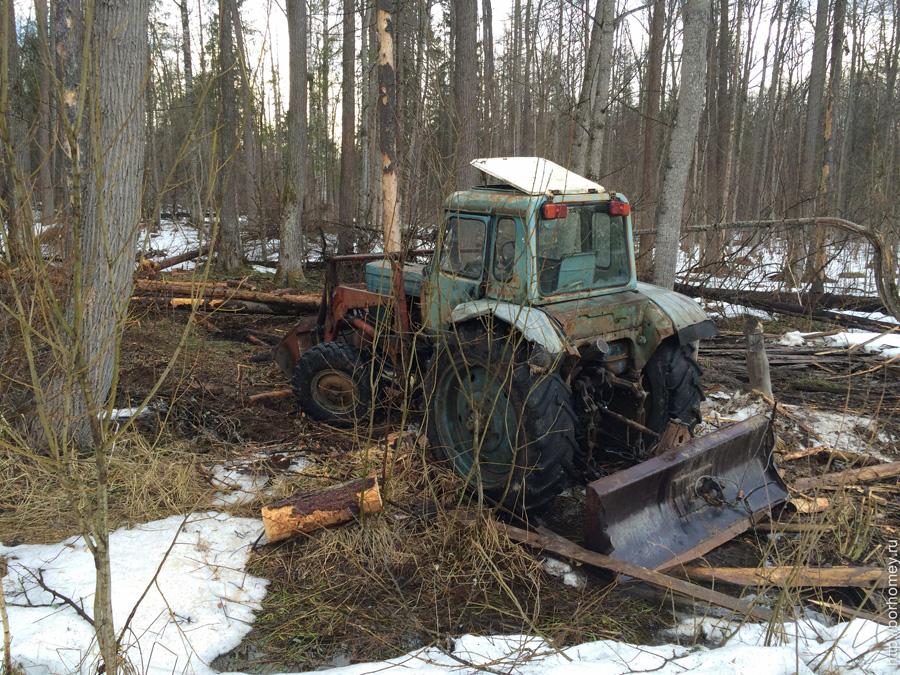 трактор остался в лесу