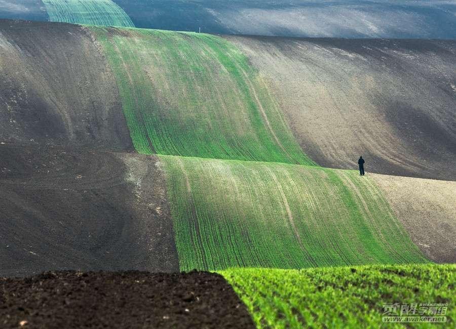 Fotografii-dokazyvayushhie-chto-chelovek-peschinka-vetom-mire-24-foto