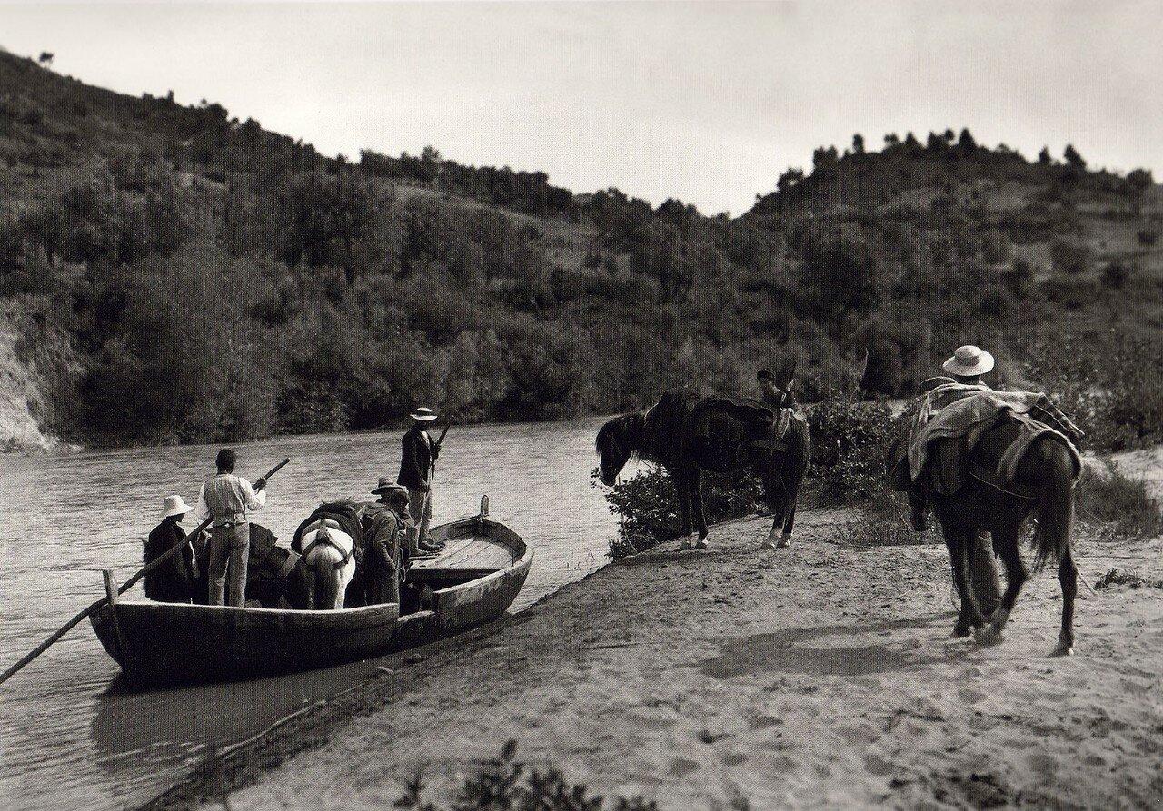 1903. Олимпия, Алфей