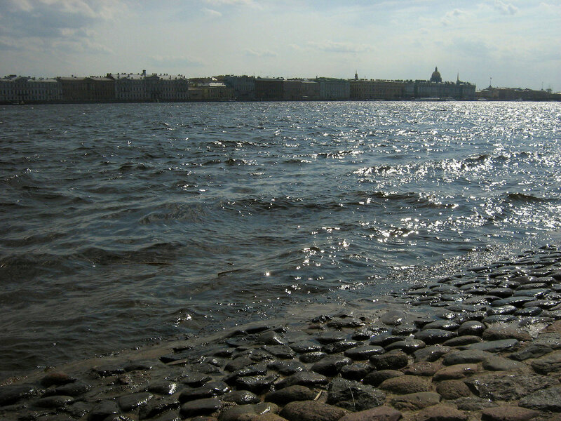 Нева и город