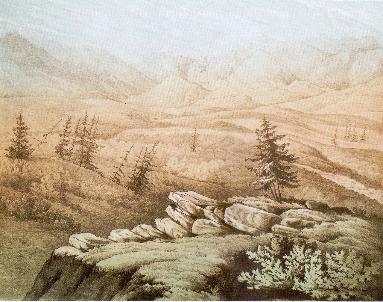 94.А Мюнстер. Вид на Ергак-Таргак-Тайга. Запечатлено с границы леса (на высот 700 футов).  возм с рис Нем.jpg