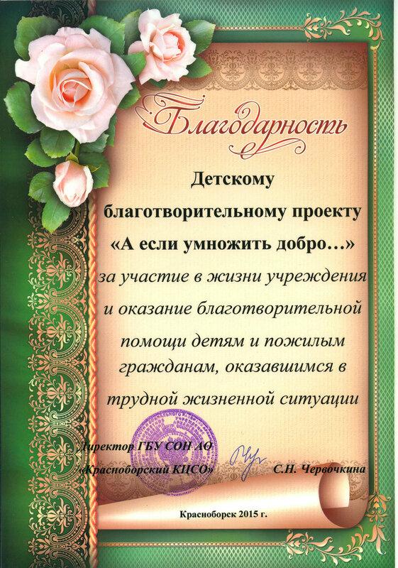 Благодарность Красноборский ЦСО.jpg