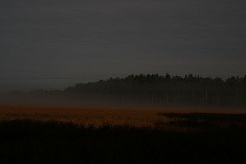 Туман наползает на ночные поля, освещенные яркой луной