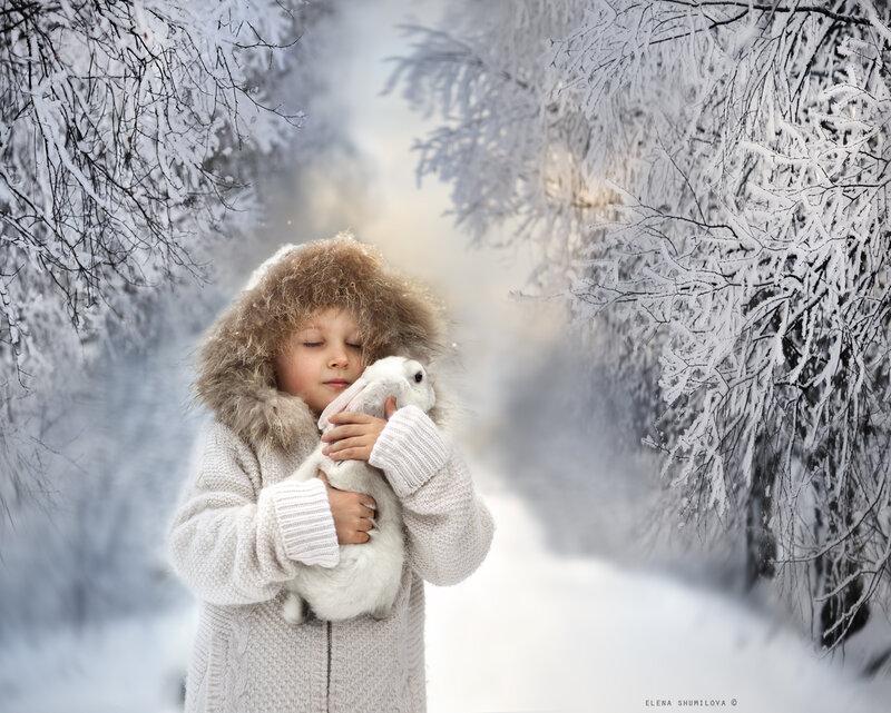 Елена Шумилова: Напоследок о зиме