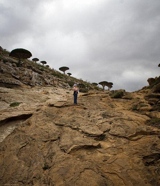 Socotra, Homhill