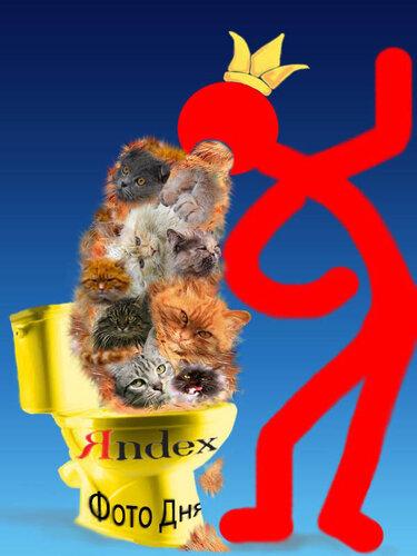 homo-bobr — «тошнит от кошек на ФД2.jpg» на Яндекс.Фотках