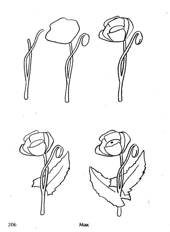Картинки цветы срисовать 7