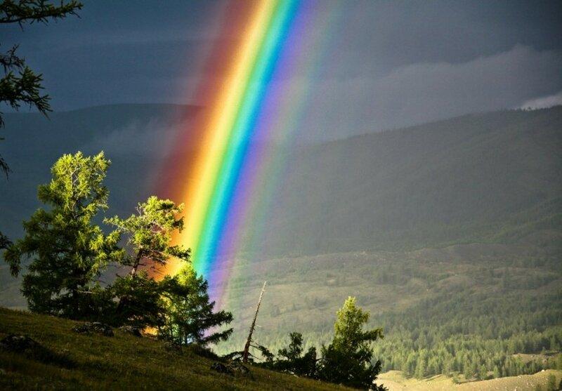 Непостижимая красота дикой природы России. Фотоконкурс National Geographic 0 1b37a4 e1323e98 XL