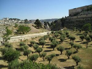 Ізраїль моїми очима