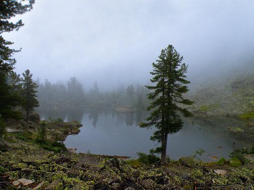 Водное зеркало в тумане
