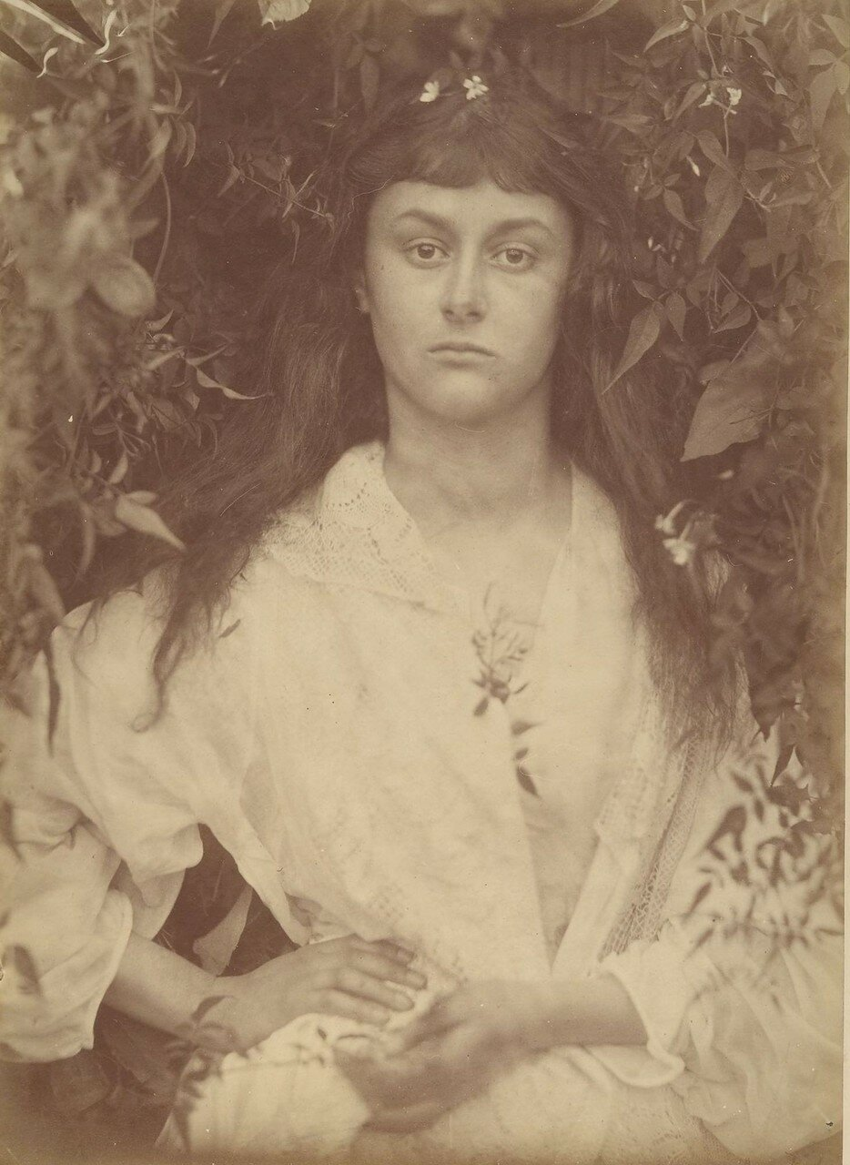 19th century photography gallery Points of View: Capturing the 19th Century in Photographs