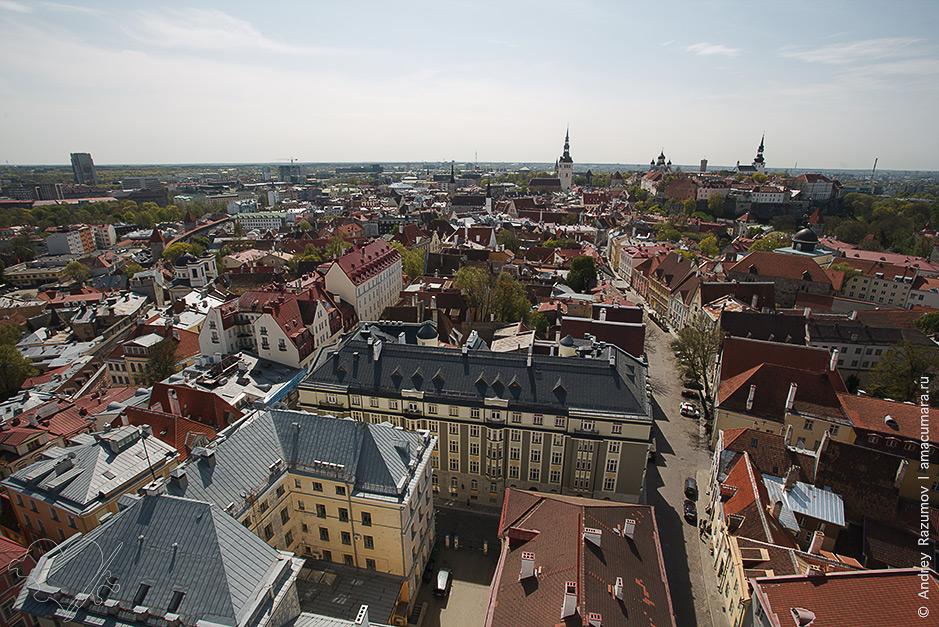 Вируские ворота Таллин Панорама