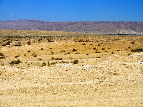 Пустыня знойная прелестна, Прекрасна, Многим интересна.....