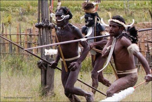 Обнюхивание Знакомство В Племенах