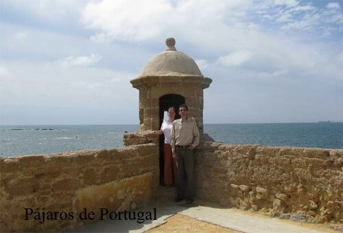 Кадис. Замок Санта-Каталина - Cadiz. Castillo de Santa Catalina