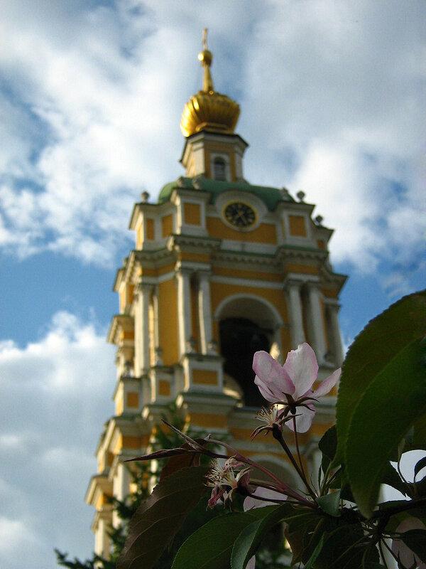 Колокольня монастыря и ветка