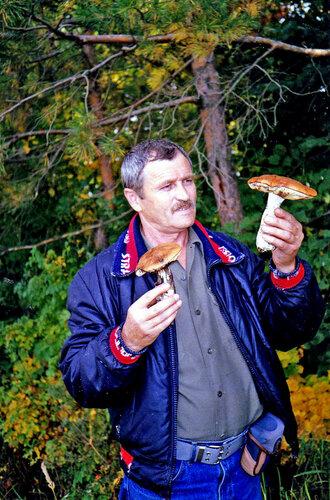 ua4wax — «грибы» на Яндекс.Фотках