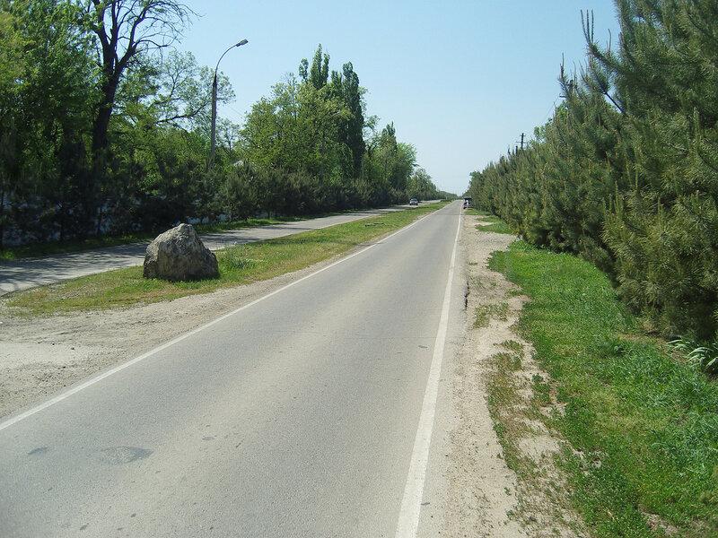 Усть-ЛабИнск. Улица Демьяна Бедного. Сосенки и камень