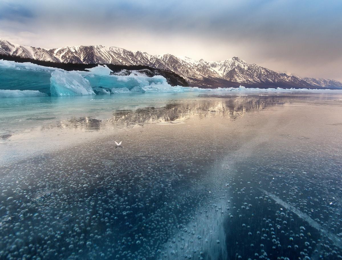 Фото: Алексей Трофимов, «Ледяная бабочка»