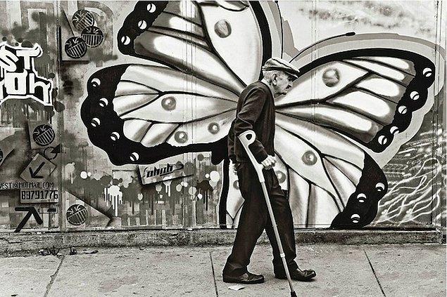 Уродливая гусеница превратилась в прекрасную бабочку
