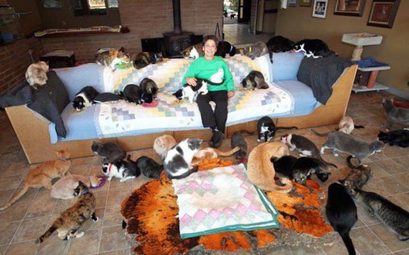 Латтанцио начала заниматься уходом за кошками еще в далеком 1992 году и даже получила ветеринарное о