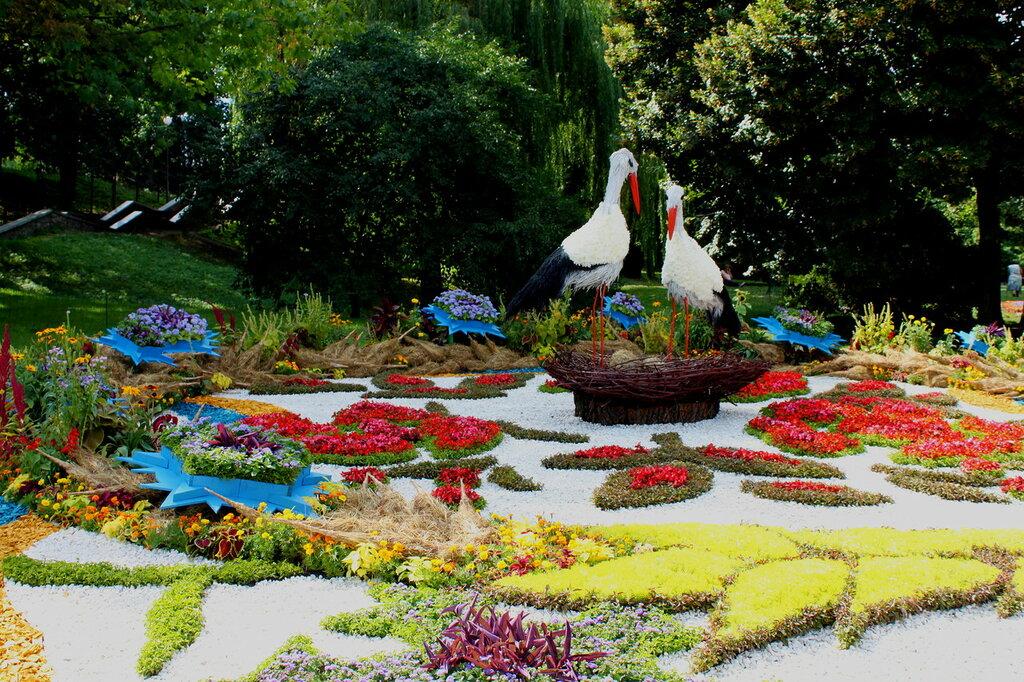 Выставка цветов Певческое поле Цветочный оберег Киев