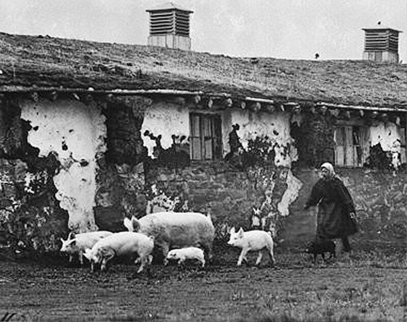 Сельские жители раннего СССР. 037.jpg