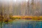 пейзажи, фотографии