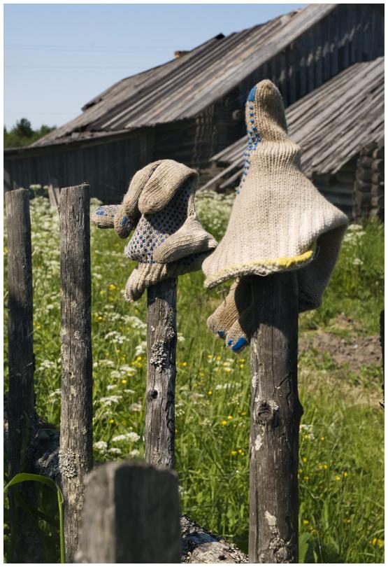 Деревня Малые Озерки