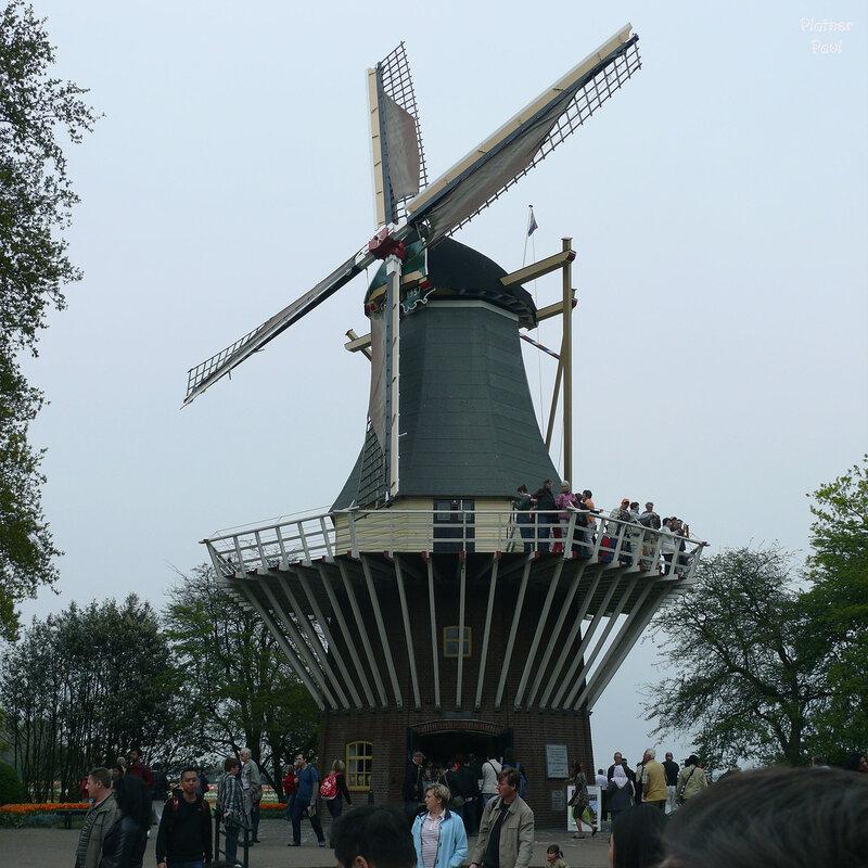 в Койкенхофе находится еще один символ Голландии - ветрянная мельница