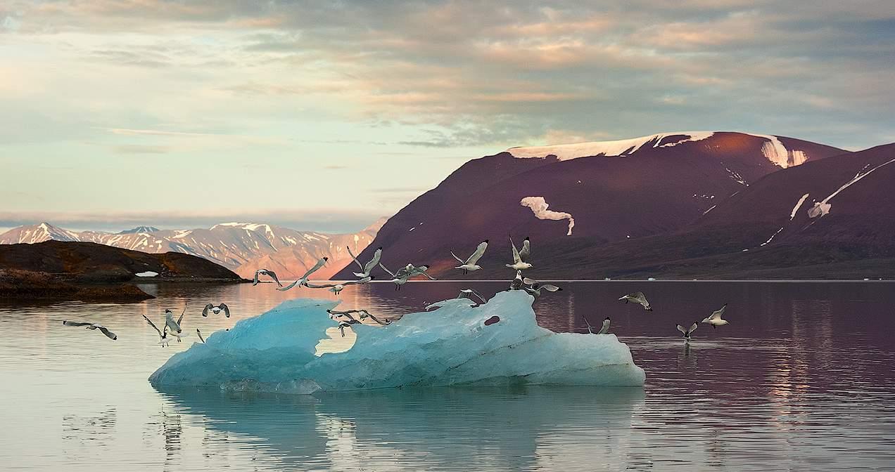 Шпицберген спорная зона рыбной ловли