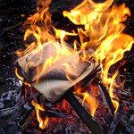 Книги горят, но знания вечны...