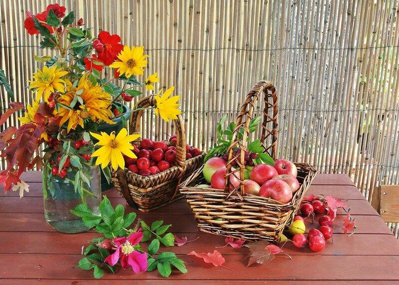 Цветы и плоды (2)