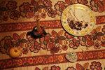 001. Рождество под Вентспилсом, 24-26 декабря 2012 года #2.jpg