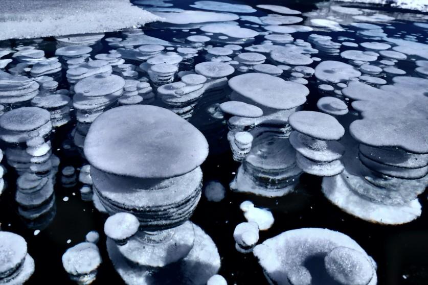 Фото: Колин Андрей, «Байкальские блины»
