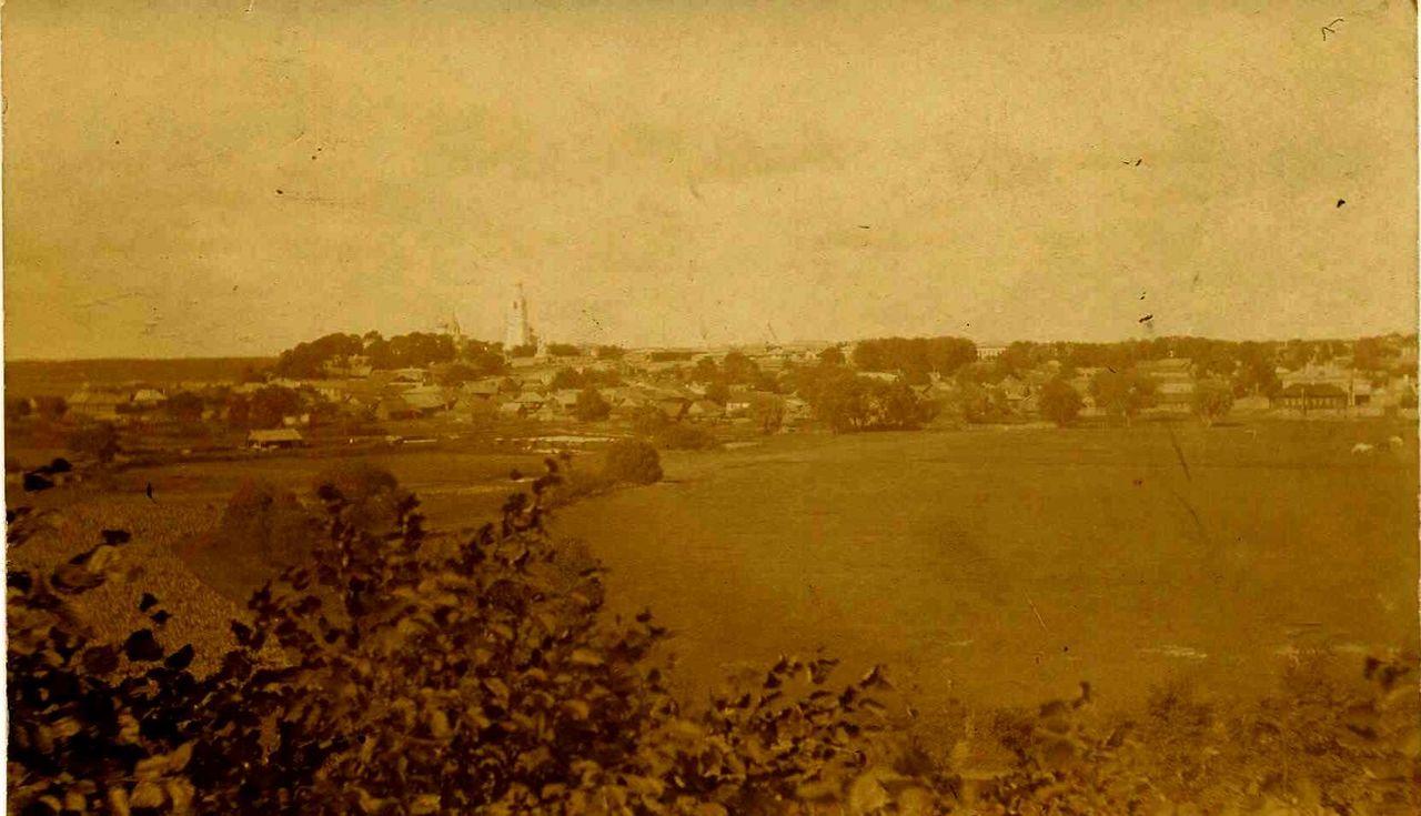 Вид города с Селивановой горы