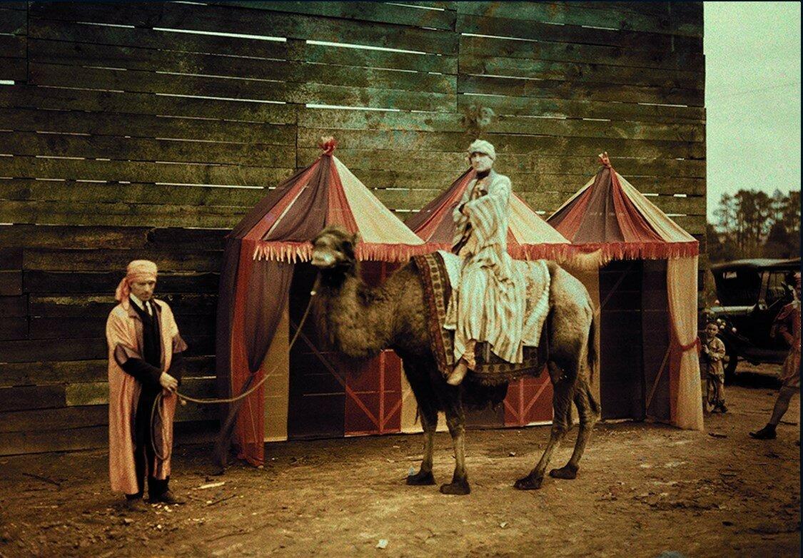1925. Двугорбый верблюд и наездник на «Peach Blossom Festival» в Форт Вэлли, Джорджия
