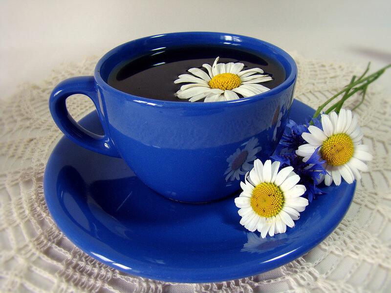Ромашишковый чай..