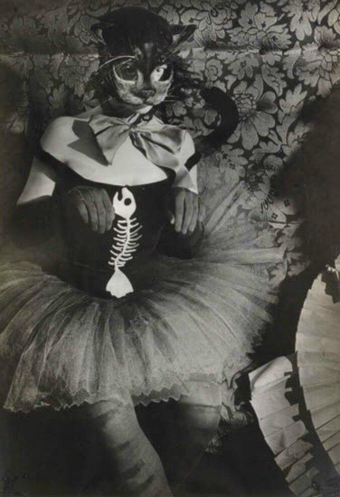 1930-е. Молодая женщина в маске кошки