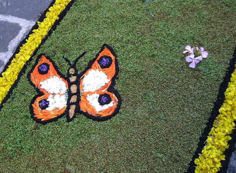 Бабочка из лепестков.